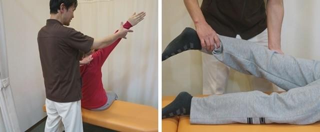 鎖骨と股関節を整えます