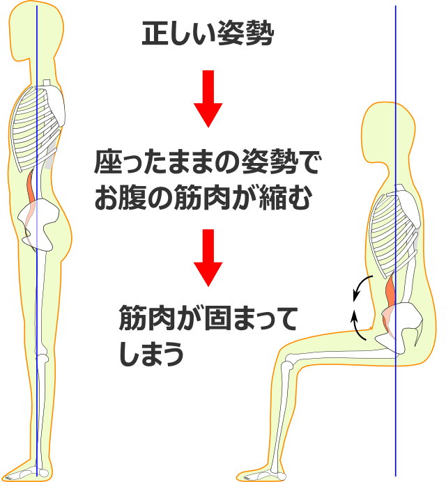 体のゆがみの過程1